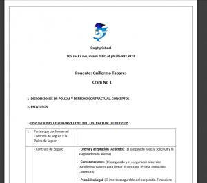 Examen Simulador en Español en PDF